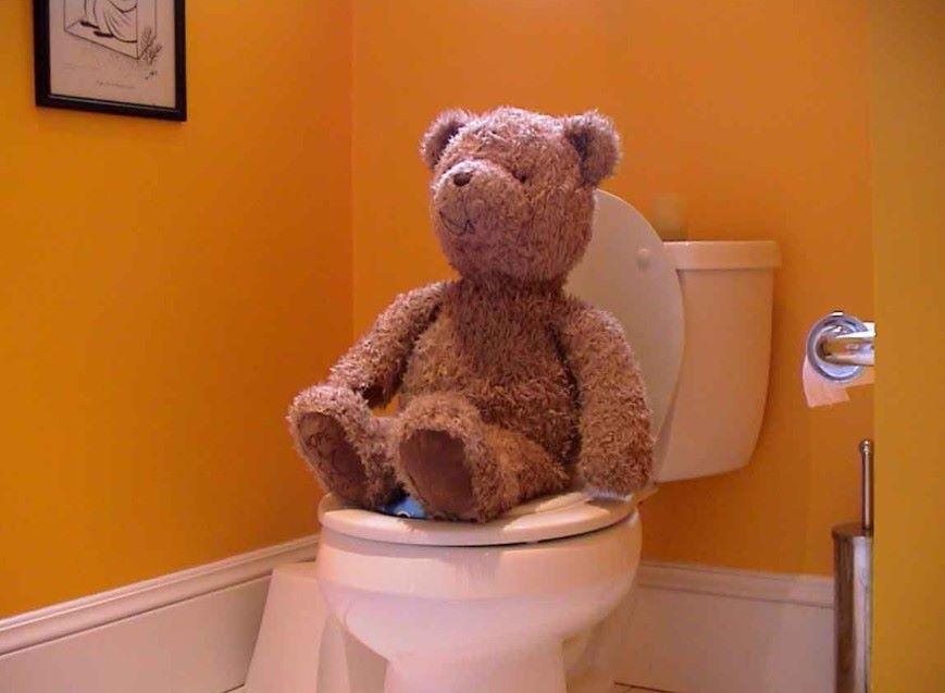 montesorri toilet learning